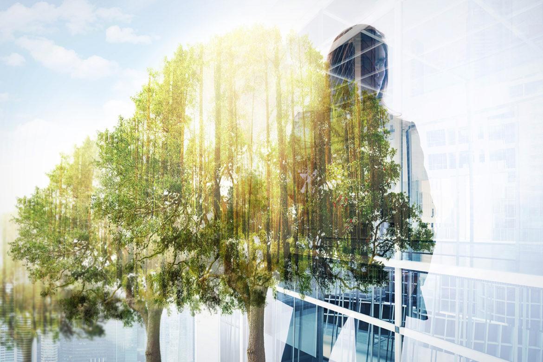 NEWS: Gründerzentrum für Energie, Greentech und Nachhaltigkeit
